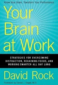 David Rock - Your Brain at Work