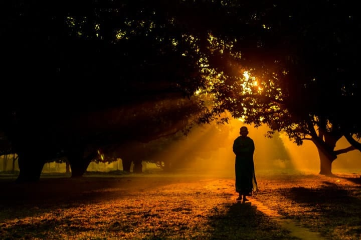 a buddhist monk walking through the forest