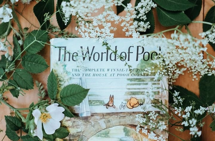 a book cover of the world of pooh