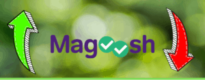 magoosh pros and cons