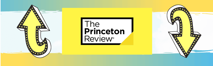 princeton review pros and cons