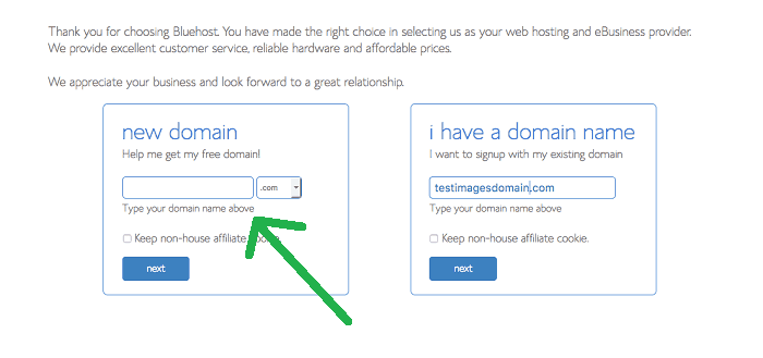 selecting domain name
