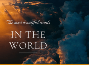 the most beautiful words in the world -