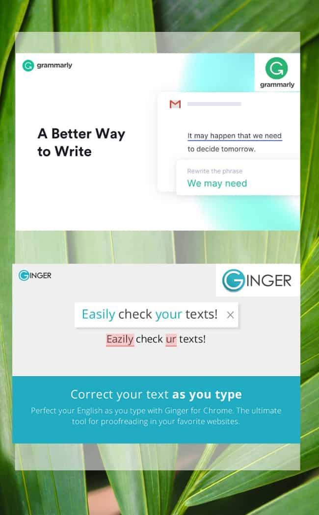 grammarly vs ginger - browser extensions