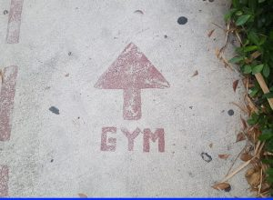 gym - featured image