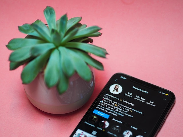 influencer phone instagram account and a plant